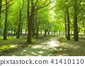 park, parks, tree 41410110