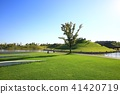 나무, 초원, 연못 41420719