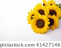 向日葵 花朵 花 41427146