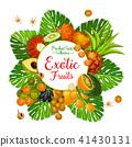 fruit exotic berry 41430131