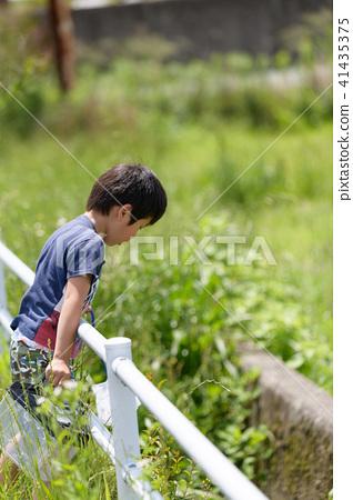 자연 물놀이 여름 방학 곤충 잡기 아이 41435375