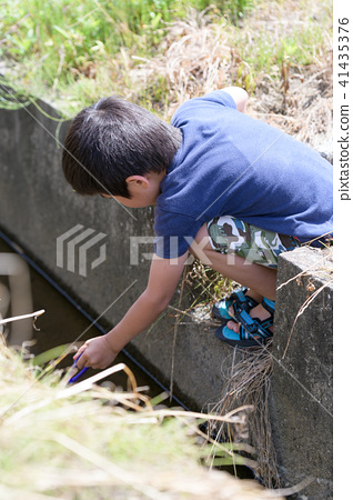 자연 물놀이 여름 방학 곤충 잡기 아이 41435376