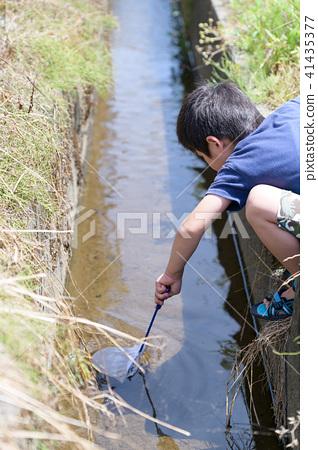 자연 물놀이 여름 방학 곤충 잡기 아이 41435377