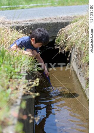 자연 물놀이 여름 방학 곤충 잡기 아이 41435380