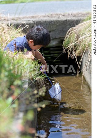 자연 물놀이 여름 방학 곤충 잡기 아이 41435381