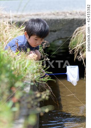 자연 물놀이 여름 방학 곤충 잡기 아이 41435382