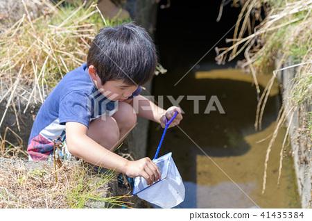 자연 물놀이 여름 방학 곤충 잡기 아이 41435384
