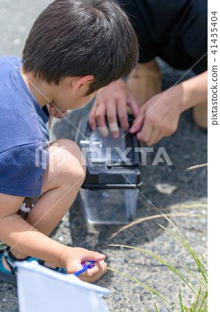 자연 물놀이 여름 방학 곤충 잡기 아이 41435404