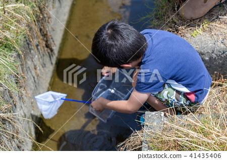 자연 물놀이 여름 방학 곤충 잡기 아이 41435406