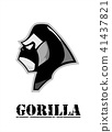 side view of Gorilla head in black and white. 41437821