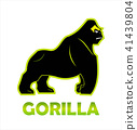 Gorilla, king kong, alpha male 41439804
