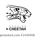cheetah, roaring cheetah in black and white. 41440408