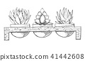 Sketch of three succulents in pots 41442608