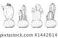 Sketch of succulents in pots. 41442614
