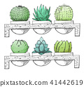 Sketch succulents in pots on a wooden stand. 41442619