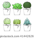 Sketch of succulents in pots. Stylized watercolor 41442626