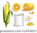 corn set vector 41444657