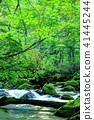 mountain, stream, torrent 41445244