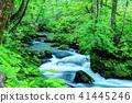 mountain, stream, torrent 41445246