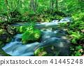 mountain, stream, torrent 41445248