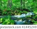 mountain, stream, torrent 41445249