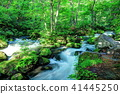mountain, stream, torrent 41445250