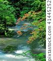 mountain, stream, torrent 41445252