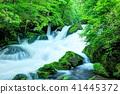 mountain, stream, torrent 41445372