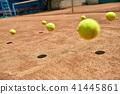 Jumping tennis balls 41445861