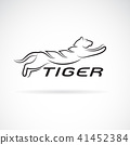 Vector of black tiger design on white background. 41452384