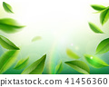 Green tea leaves vector nature background. 41456360