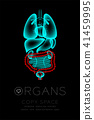 Male Organs X-ray set, Large Intestine infection 41459995
