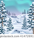 Winter Background  with Aurora Borealis 41472691