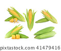 corn isolated on white background. 41479416