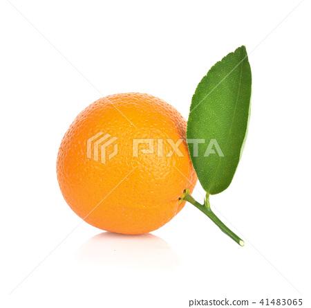 Orange on white background 41483065