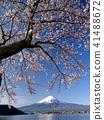 富士山 春天 春 41488672