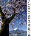 富士山 春天 春 41488673