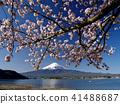 樱花盛开的河口湖 41488687