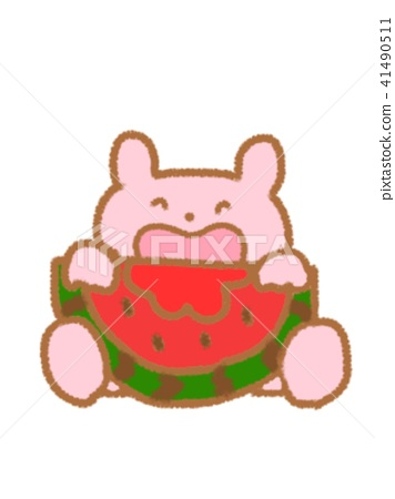Rabbit to eat watermelon 41490511