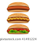 Realistic Detailed 3d Hotdog Fast Food Set. Vector 41491224