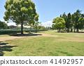 สวน,สวนสาธารณะ,พืชสีเขียว 41492957