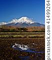 富士山 春天 春 41499264