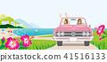 핑크 오픈카로 드라이브하는 두 여자 - 히비스커스 피는 언덕 41516133