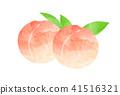 복숭아, 과일, 후르츠 41516321