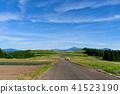 푸른 하늘과 길 41523190