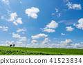 풍경, 경치, 하늘 41523834