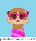Meerkat girl portrait with pink glasses and scarff. Vector illustration. 41525439