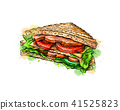 Sandwich fast food from a splash of watercolor 41525823