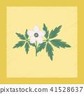 flat shading style icon flower Anemone 41528637