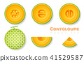 Set of cantaloupe melons in paper art style 41529587